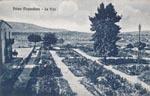 Foto d epoca di palma di montechiaro radici e tradizioni - Radici palma ...